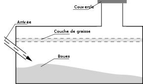 fossa biologica