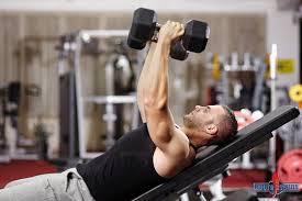 www.bodybuilding-natural.com