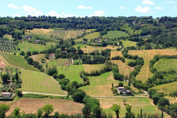 Agriturismo a Orvieto: scegliere la cittadina dell'Umbria per visitare luoghi incantati